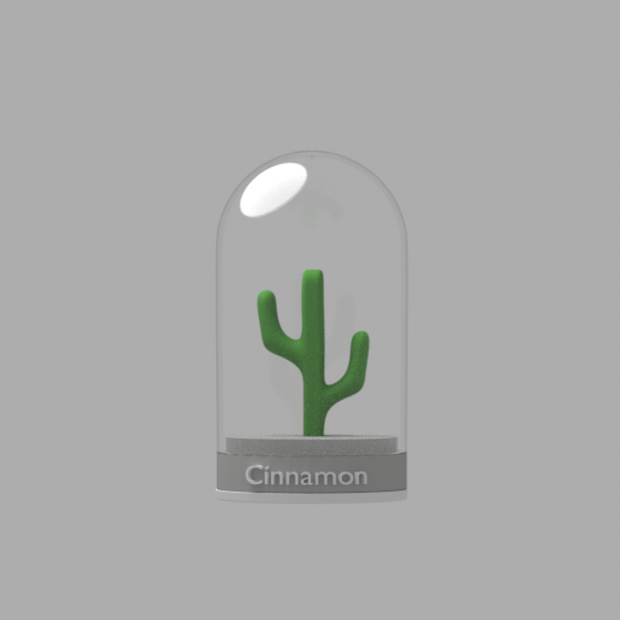 Cinnamon Spice Shaker